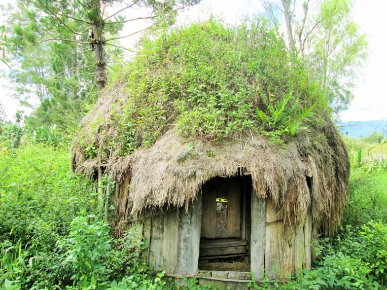 Honai - rumah adat khas Wamena (Foto/ Ibhen)